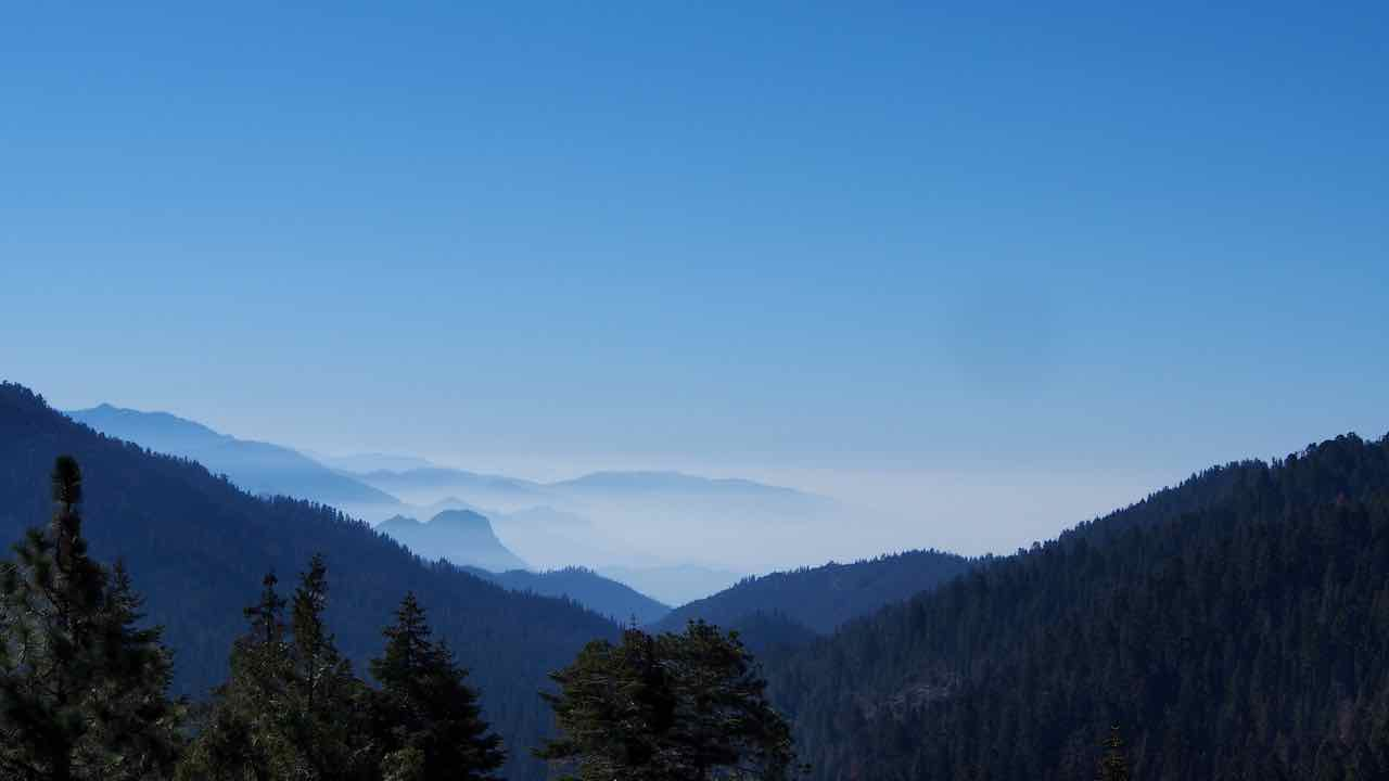 der Sequoia Nationalpark